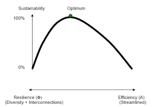 Eficiencia vs resiliencia