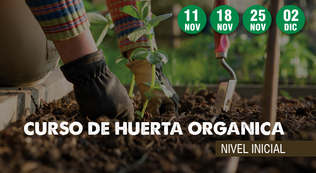 Curso Huerta orgánica – Nivel inicial