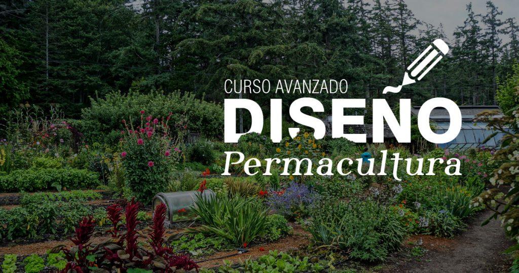 Curso avanzado de diseño en permacultura