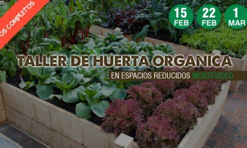 FLYER taller de huesrta organica en espacios reducidos