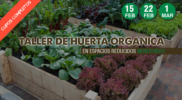 Taller de Huerta orgánica en espacios reducidos